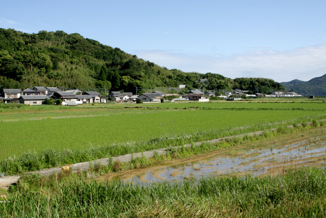 島の内側は比較的なだらかで、水田や棚田が広がっている