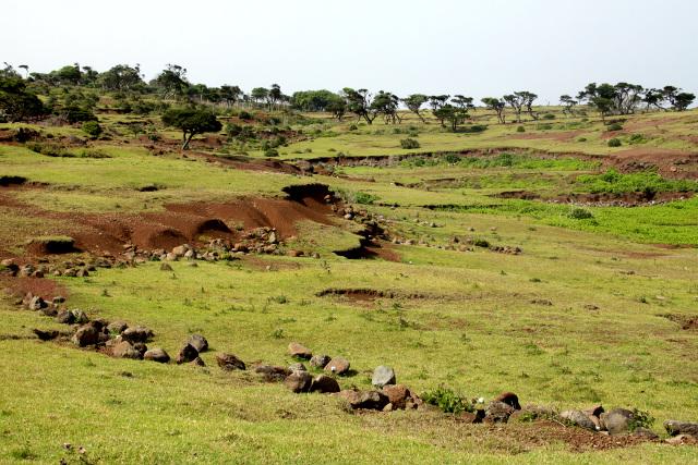 今では畑の石垣が崩れ、土砂が流れ出している