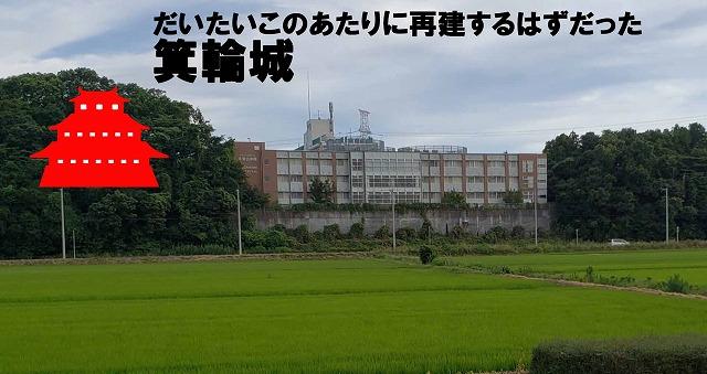もともと建っていた場所に再建されると仮定すると、いま手賀沼病院が建っているところあたりに築城される