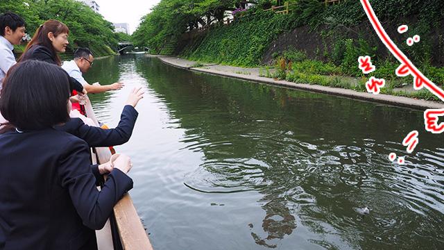 最後は魚に餌やり体験。濁ってて姿はよく見えないけど。