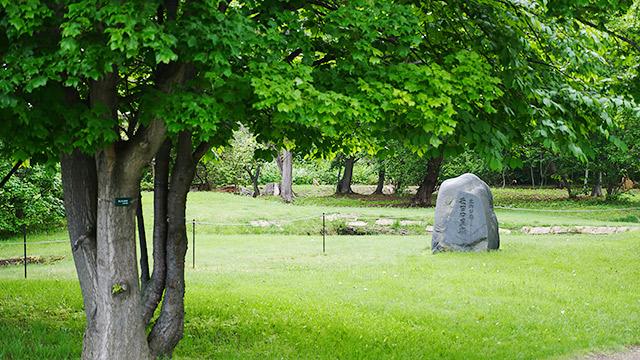 お墓の復元された場所では、