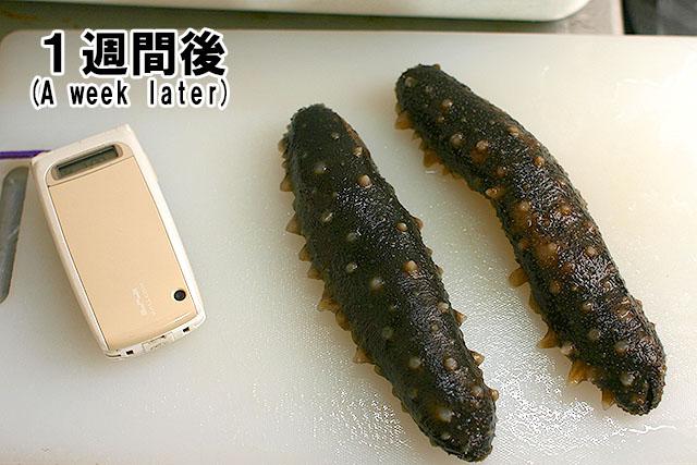 これはもう、日本人の例えでは計れないね。外人だろう、外人。