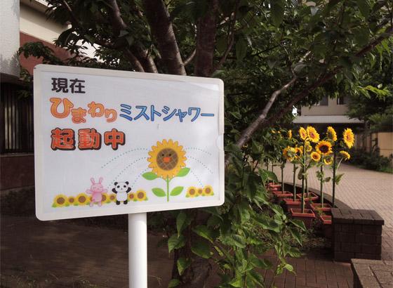 「造花かい!」