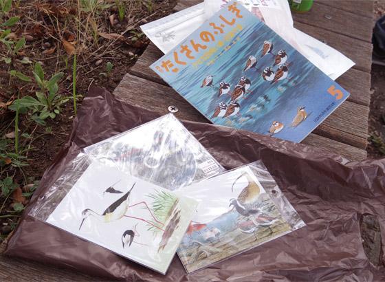 自然観察センターでそれぞれに買い込んだ、谷津干潟グッズの数々
