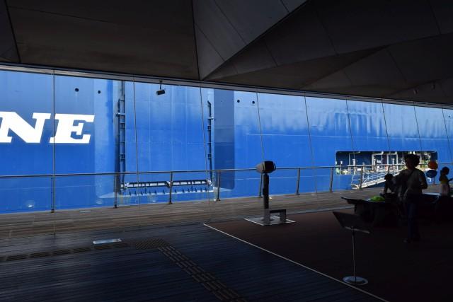大さん橋国際客船ターミナルの中から。普段は窓の外に横浜港が見えるのだけど、視界が船で埋まっている。