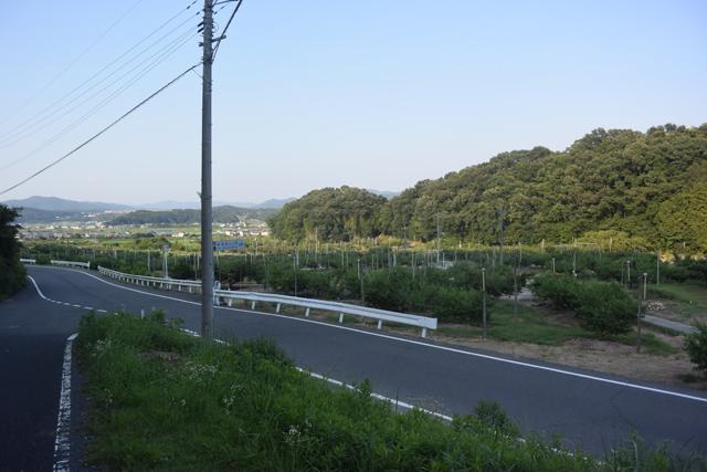 赤磐市の市街地から程近い鴨前(かもさき)地区という所。写真の中央は桃の畑。遠くには赤磐市の街が見える。