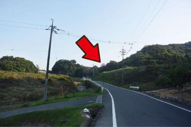 先程から反対側の山の上にスキンヘッドの様な物体が見えている。