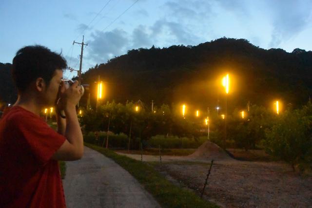 あぜ道に入っていくと光に囲まれる。インスタ映えは間違いない。畑だけど。