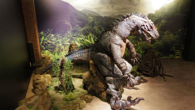 恐竜・小学生ぐらいの大きさがあるなんらかの恐竜