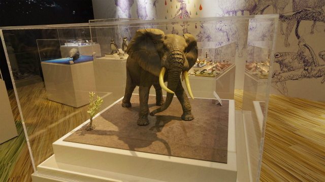 動物・耳がデカイのでたぶんアフリカゾウ