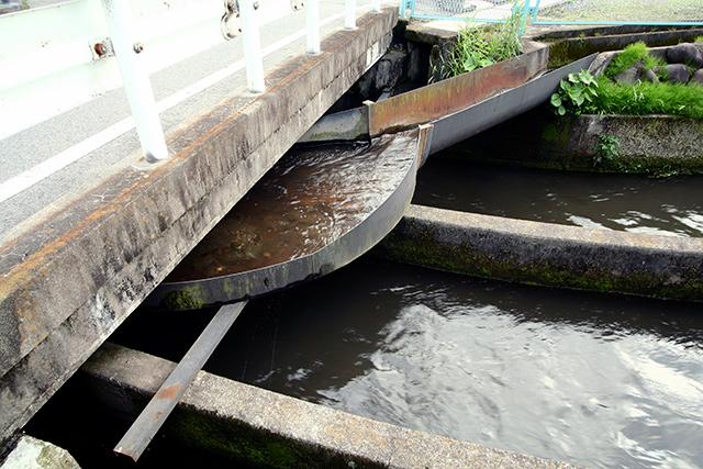どこからか別の水路が合流