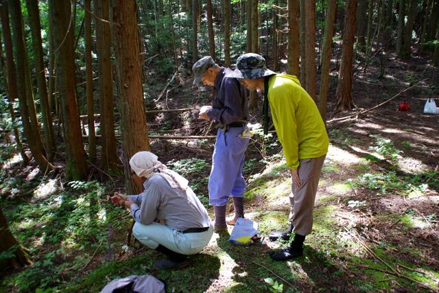 エサを仕掛ける小川さんと藤夫さん。右の黄緑色が私です。