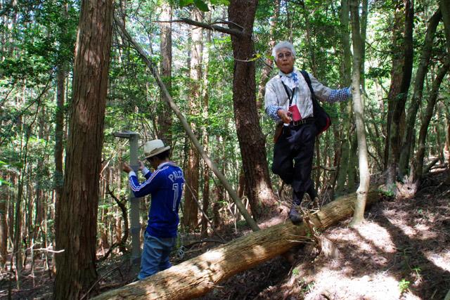 「佐藤君はここにハシゴを掛けて見張ってくれ!」と、生き生きと指示を出す岩井さん。
