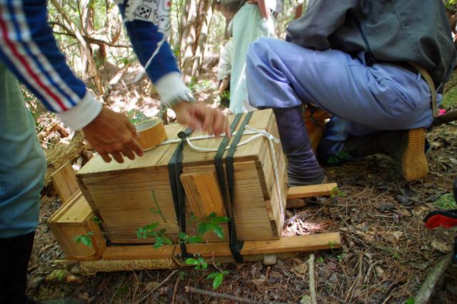 巣箱はへぼの出入り口をガムテープでふさいでおく。