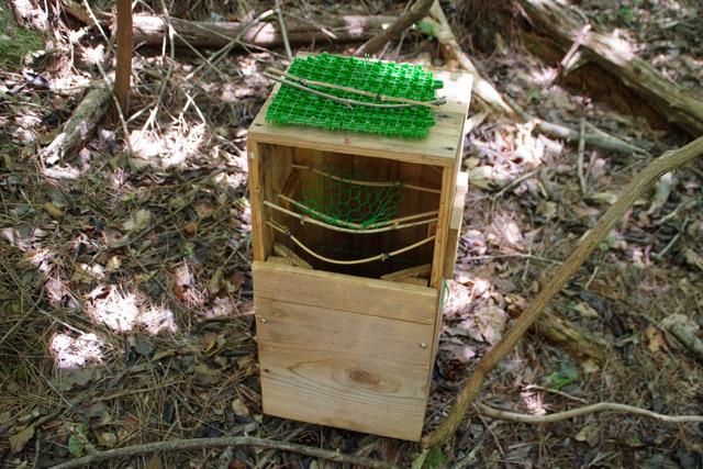 巣を入れられるように一部を開けて、これからの決戦に備える。この金網部分に巣を置いて、上下からしっかりと固定するようだ。