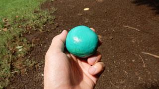 もう1個、チョコミントわらびも粘土で作ってみていたのだが、これはなんか違うものになった。