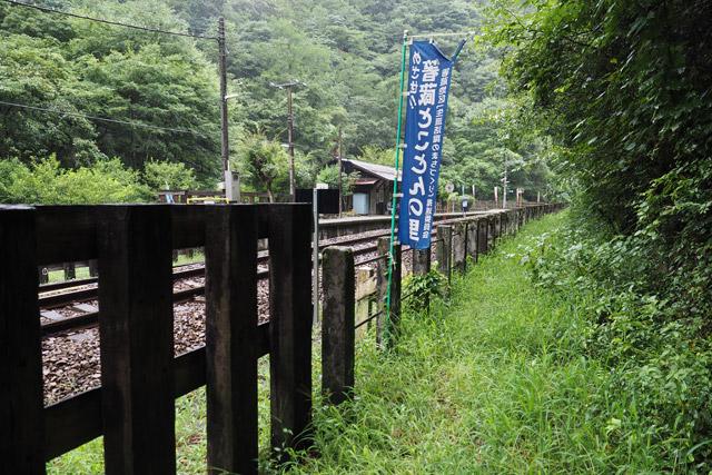 線路の脇に、奥へと続く道があった。2本目の道と比べると柵もあって、まだ道らしさが残っているが……
