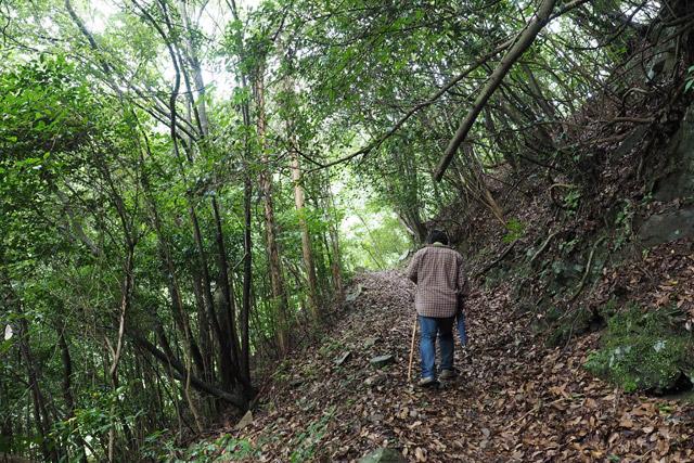 もう言わずもがな、国道まではこのような山道を20分ほど登る必要がある