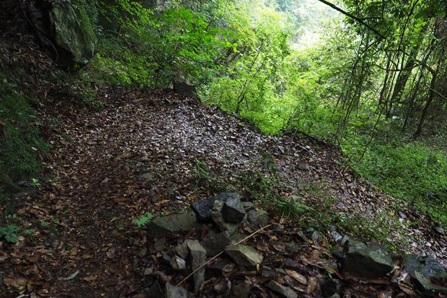 上りに比べれば、下りはいくぶん楽である。とはいえ雨の山道なので油断はできない。一歩ずつ踏みしめながら歩く