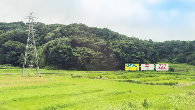 そしてトップの扉画像に選んだこちら。ちょっとした谷戸に、鉄塔と並んで立つ三兄弟は東海道新幹線車窓のハイライトだ。