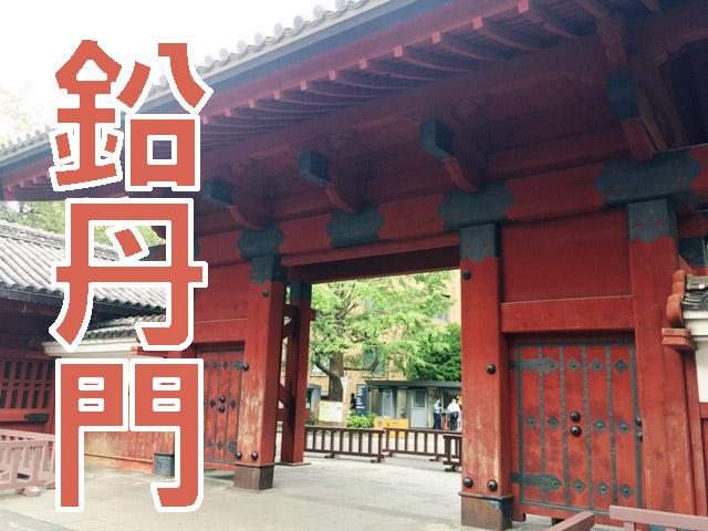 赤門なんて簡単に呼ばずにきっちり鉛丹門と呼んでいこう。東大っぽさが増す。