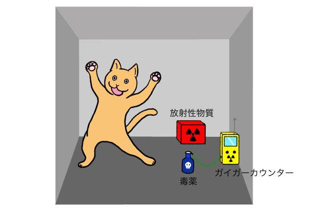 猫、元気。
