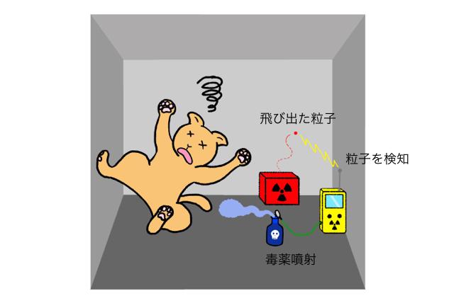 猫、キュウー。実際は死んでないですよ!