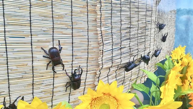 昆虫たちもいる!