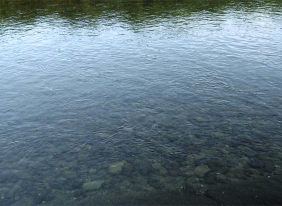 それにしても、水がきれいだな~