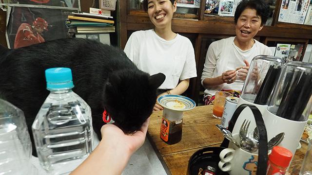 みんなの協力(鰹節作戦)により猫のミミちゃんの写真も撮れた。満足。