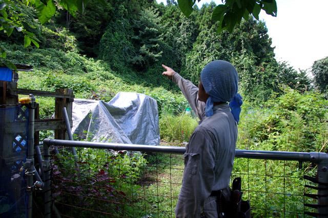 「周囲に人は住んでいませんが、クマなら昨日もそこに出ました。イノシシもたくさんいますよ」と、冷静な口調で教えてくれる村山さん。