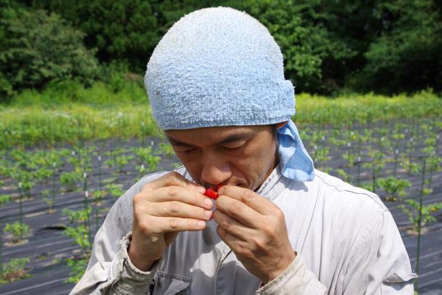 「味はもちろん、赤く熟すと香りが良いんですよ」と嗅ぐ村山さん。
