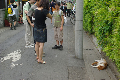 鎌倉、小町通りに大胆な格好で ...