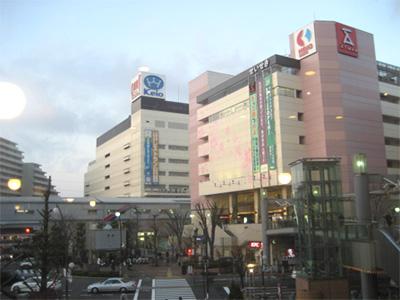 一年中桜が見れる街 こちらは泣く子も黙る多摩の渋谷こと「聖蹟桜ケ丘」という街なのですが、桜...